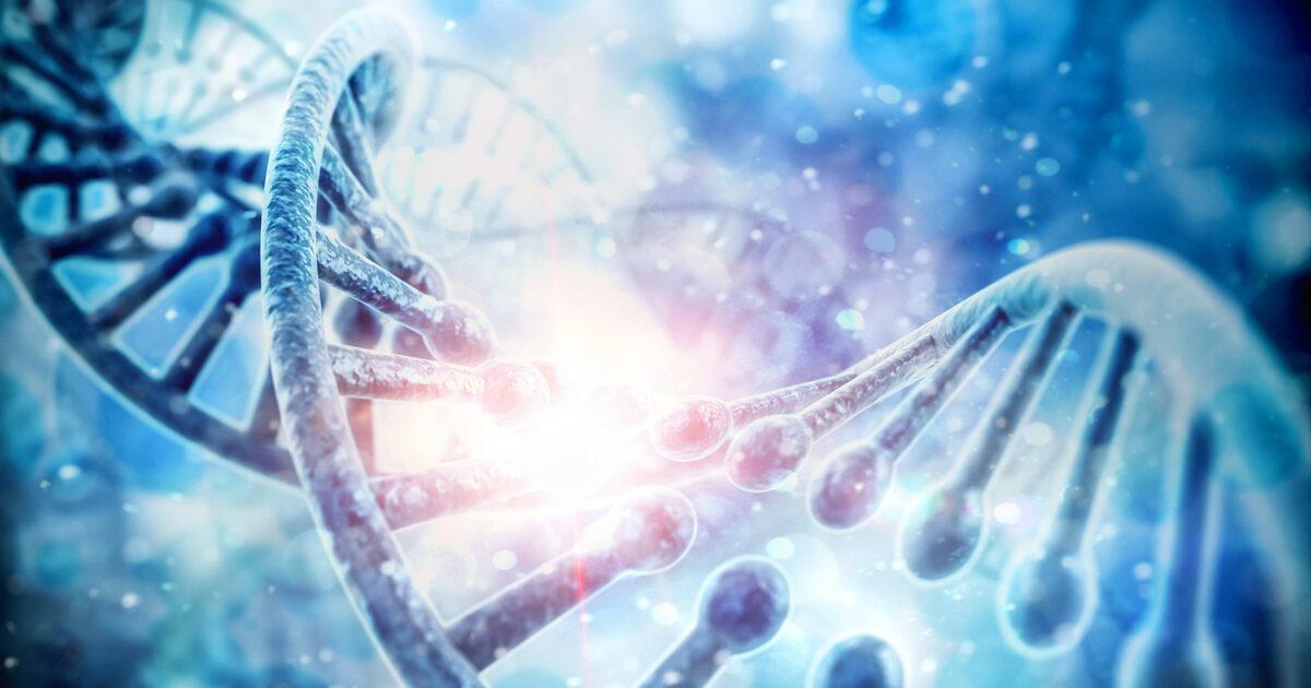 Scoperto nuovo gene