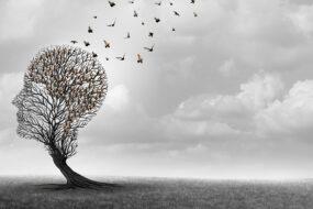 Malattia di Alzheimer le speranze arrivano dalla ricerca