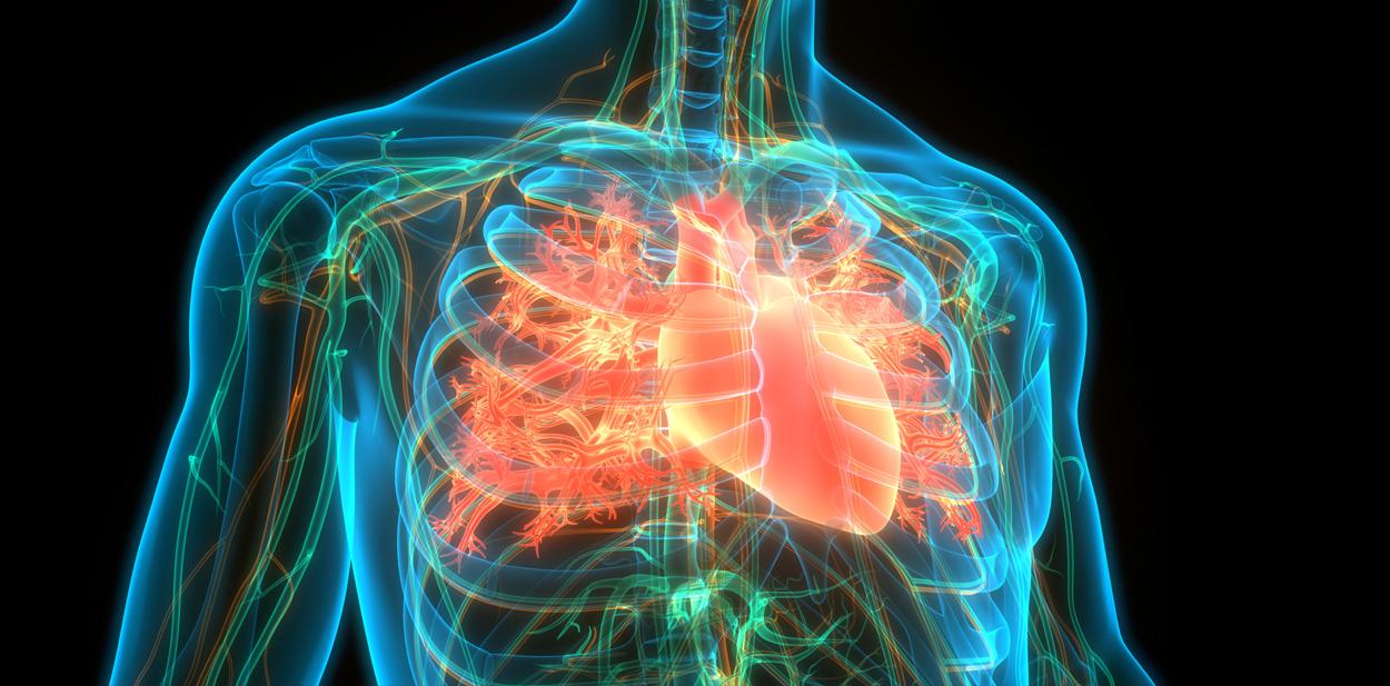 L'ischemia miocardica: prima causa di morte