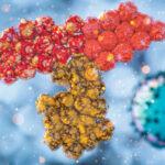 Anticorpi monoclonali: quando il tempo è strategico per salvare vite