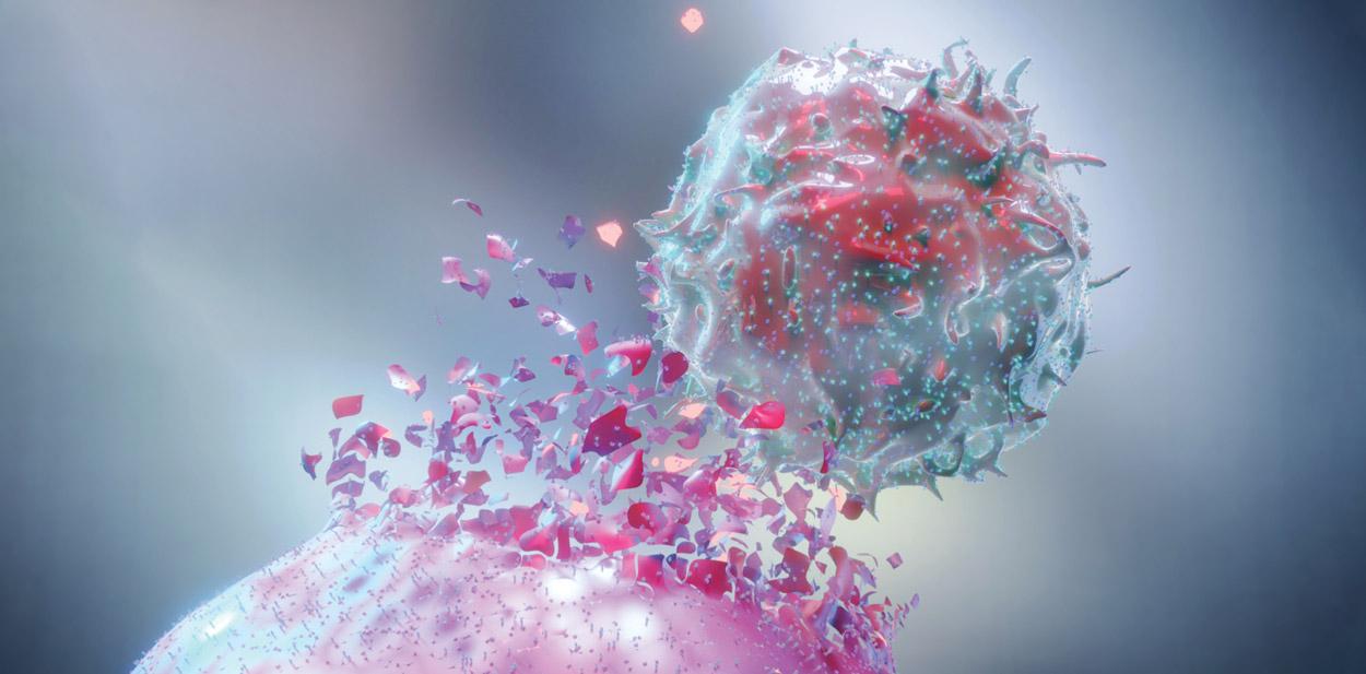 Negli ultimi anni il mondo dell'Oncologia ha sviluppato sempre maggiori conoscenze che hanno consentito lo sviluppo di trattamenti precedentemente non ipotizzabili. Grazie alla biologia molecolare abbiamo imparato che patologie che ritenevamo essere una sola entità sono, in realtà, composte da tante tipologie differenti di malattia, con andamento clinico, prognosi ed interazione con i trattamenti completamente diverse l'una dall'altra. Ciò ha aperto la strada alla medicina di precisione, spesso definita, in modo improprio, come medicina personalizzata. Infatti la medicina personalizzata si basa sia su caratteristiche della malattia che su caratteristiche cliniche quali lo stato di validità del paziente e le sue comorbidità e dovrebbe far parte, da sempre, del bagaglio culturale della classe medica. La medicina di precisione rappresenta invece un elemento innovativo, in parte già impiegato da anni, ad esempio con la determinazione dei recettori ormonali nel tumore della mammella, in cui il trattamento viene guidato dalla presenza o assenza di alterazioni specifiche che possono caratterizzare, nell'ambito di un tumore che origina dalla stessa sede, la presenza di sottogruppi con caratteristiche prognostiche differenti e con possibilità di trattamenti guidati sulla base della alterazione molecolare riscontrata. Ciò ha aperto la strada all'impiego agnostico dei farmaci, cioè indipendente dall'organo di origine e legato solo alla differenza genetica, che si sta progressivamente sviluppando e che richiederà percorsi innovativi quali l'istituzione di Molecolar Tumour Board, cioè di gruppi di lavoro multidisciplinari in grado di valutare il possibile impiego, sulla base di tutte le caratteristiche della malattia e del malato, di farmaci a bersaglio diretto sulla caratteristica molecolare. È un percorso in divenire ma rappresenta una delle innovazioni più promettenti in ambito oncologico. Il secondo ambito di sviluppo è stata la maggior capacità di interagire con il sistema 
